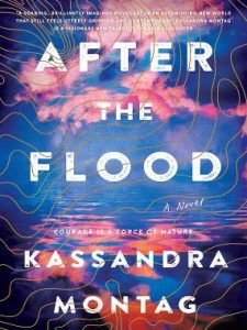 Join readers nationwide. Download After the Flood from Oct 7 -21 to participate in the digital book club. The Libraries Transform Book Pick brings readers together in the community. Learn more. A compulsively readable novel of despair and soaring hope, After the Flood is a magnificent, action packed odyssey laced with wonder. Join ALA for a Facebook Live conversation with the author on Thursday, Oct 17 @ 2pm CT. Share your thoughts on social media by using #LTBookPick.